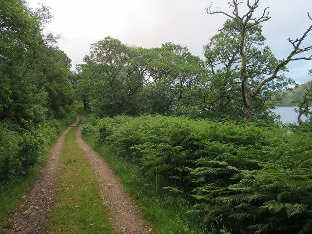 Track along Loch Etive
