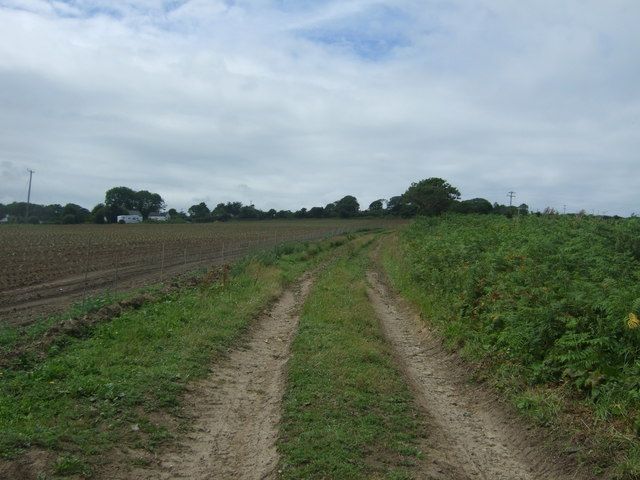 Farm track off the A30, Cockwells