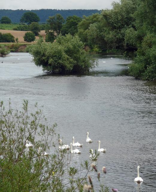 River Wye near Baysham