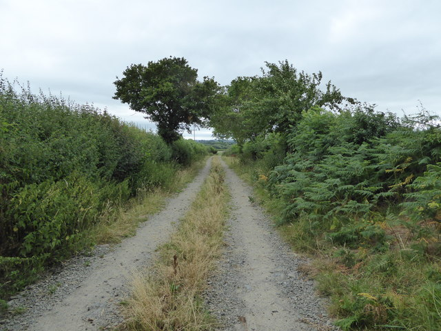 Field access track from Lowe Luggy farm