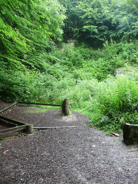 Disused quarry in Woodchester Park