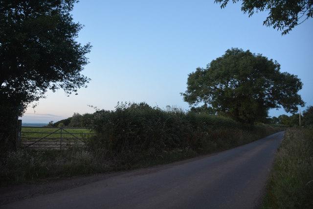 Mid Devon : Country Lane