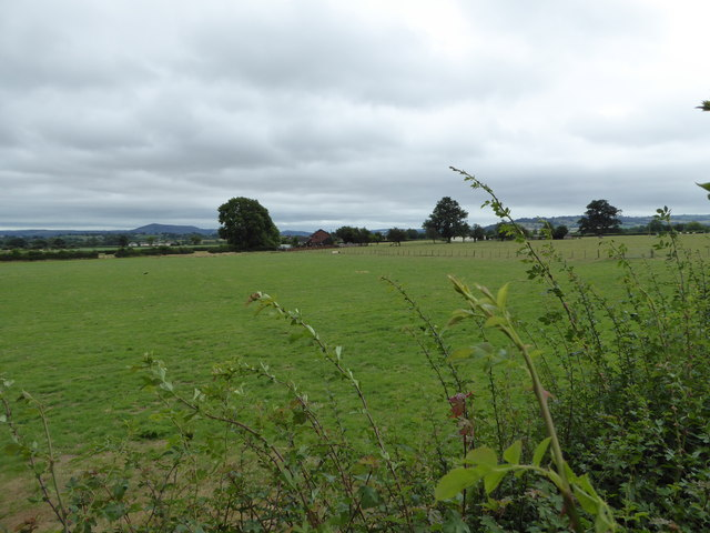 View across fields from the Montgomeryshire Canal