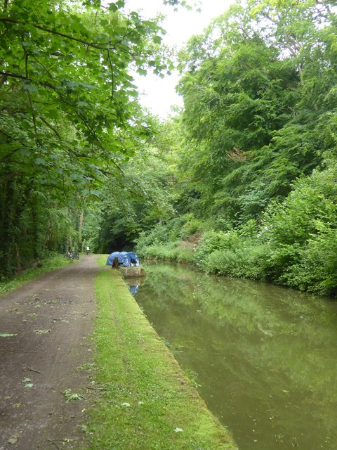Straight stretch of canal east of Limpley Stoke