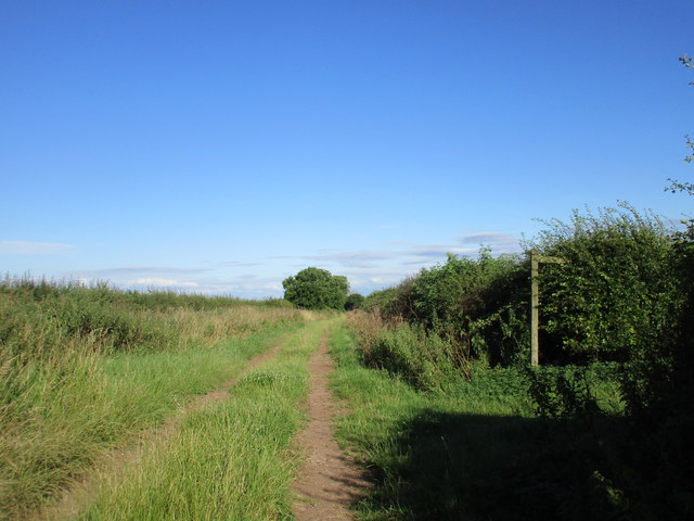 Where the track becomes a bridleway