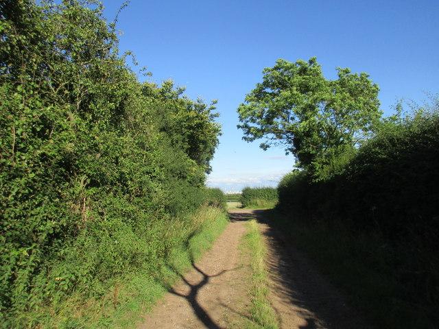 Bridleway approaching Hockerton Lane