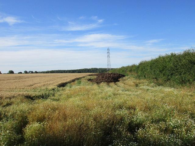 Wheatfield, pylon, muck heap