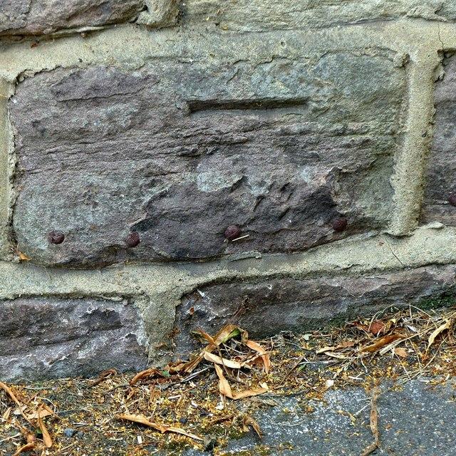 Bench mark, 36 Penn Street, Belper