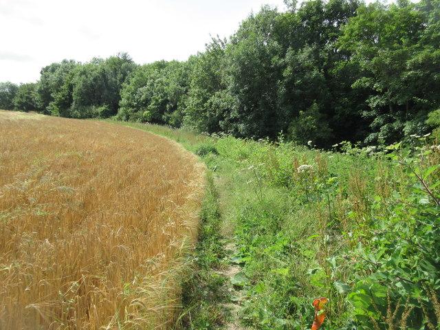 Bridleway to Highden Barn