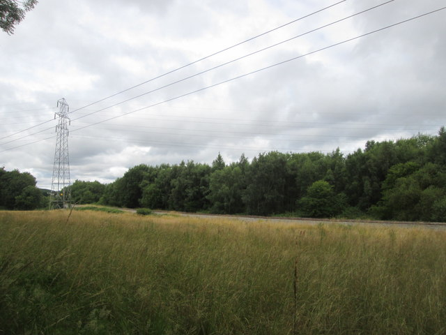 Towards the railway north of Wellow Park