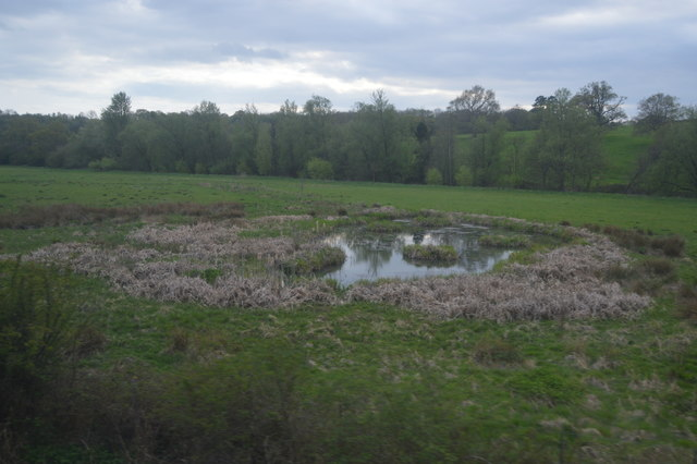 Pond, Rother Valley