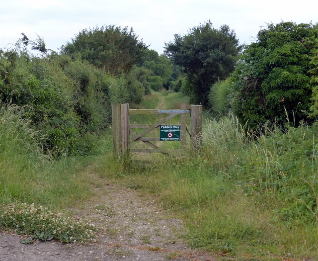 Gate along the Peddar's Way