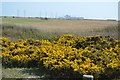 TR0417 : Distant view to Dungeness Power Stations by N Chadwick