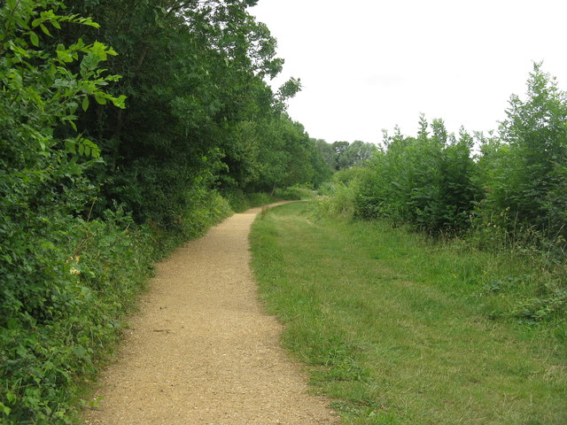 Path in Hinchingbrooke Country Park