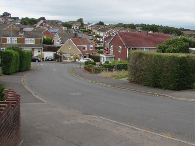 Hedges and houses, Laurel Crescent, Malpas, Newport