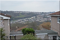 SX5057 : View over Eggbuckland by N Chadwick