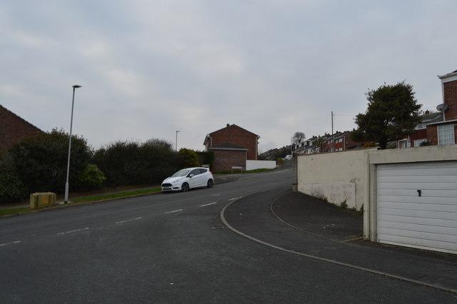 Speedwell Crescent