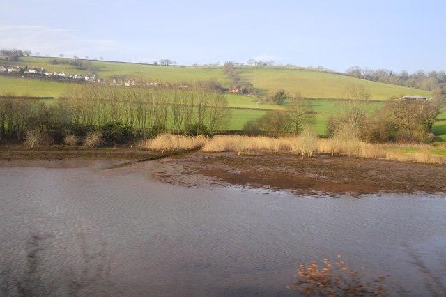 Part of the Teign Estuary