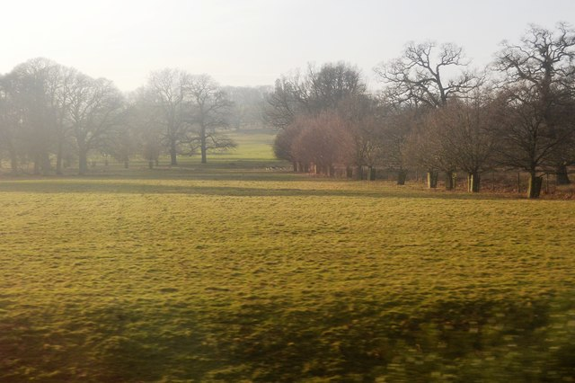 Powderham Park