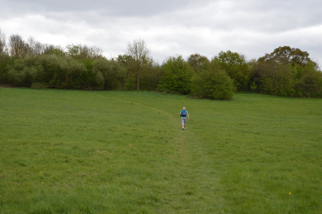 Capital Ring, Fryent Country Park