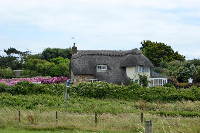 Thatched cottage, Brookgreen