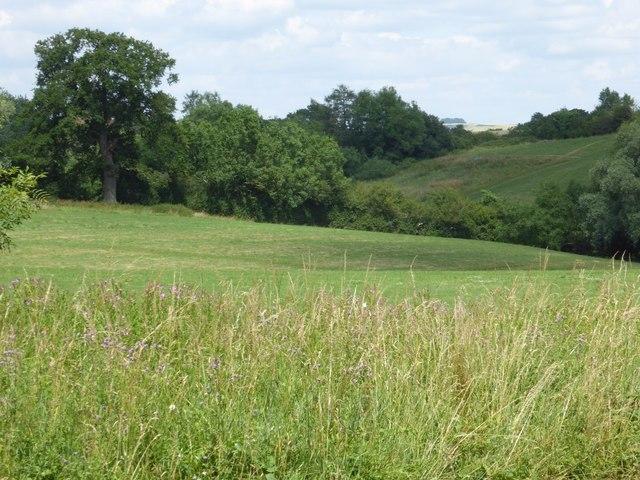 A glimpse of Brailes Hill