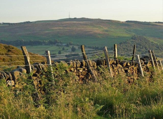 Field boundary - edge of Hathersage Moor