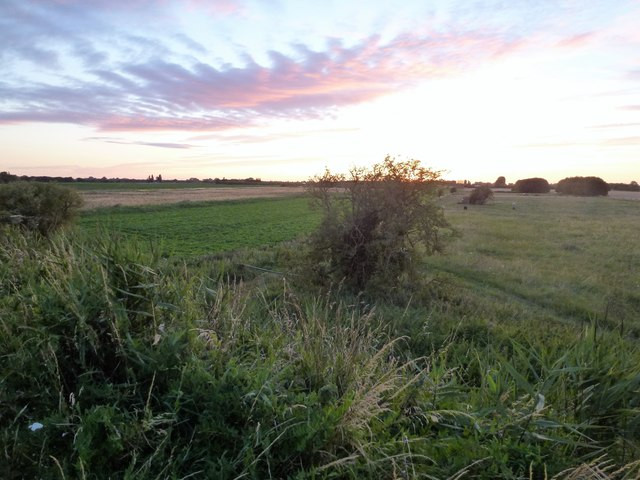 Grazing land north of the River Nene