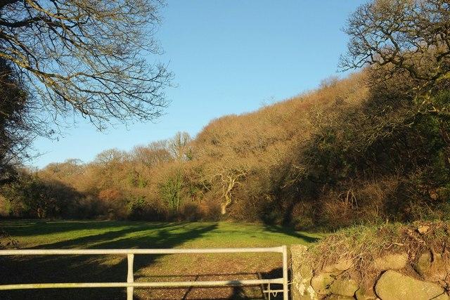 Field, Keybridge