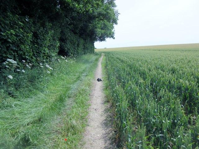 Bridleway to Muntham Farm
