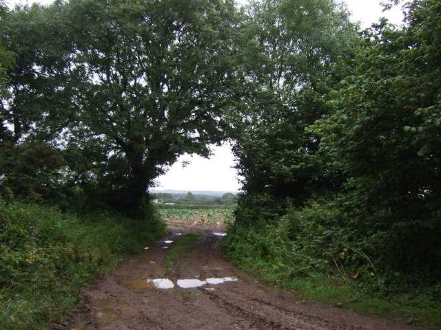 Farm track off Bunkers Hill