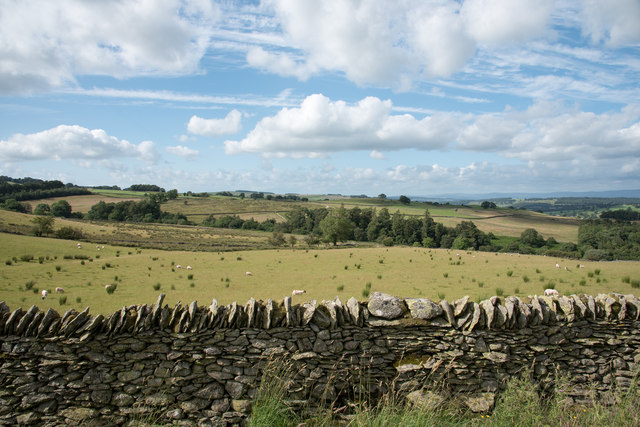 Field beyond dry stone wall