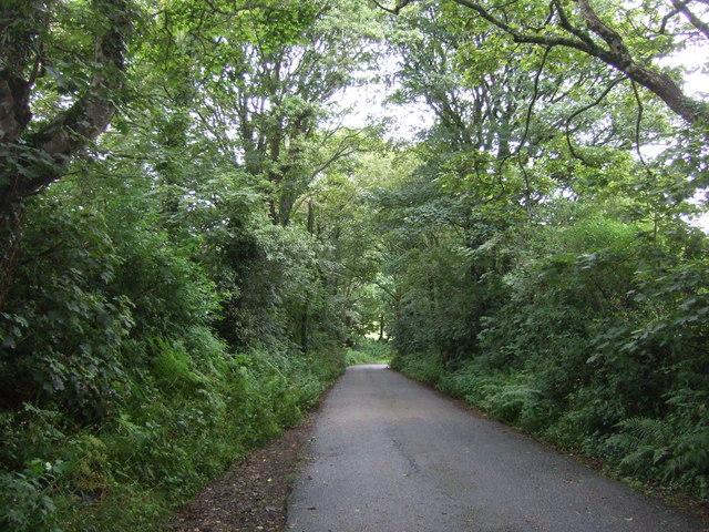 Minor road towards Sithney Green