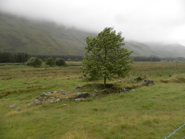 Ruined dwelling at Bontyre, Glen Clova