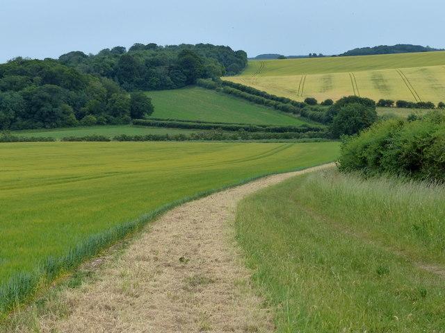 Peddar's Way descending into the Heacham River valley