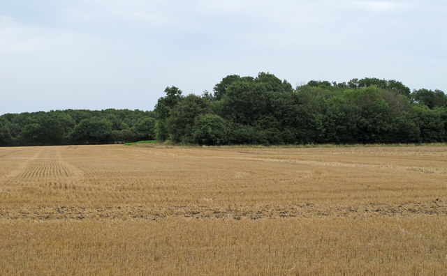 Looking to Parson's Pit over Harvested Wheat Field, Hulver Street