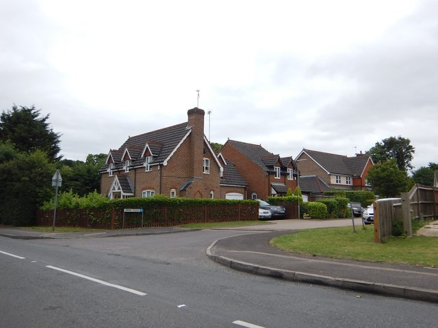 Modern Houses on The Mount
