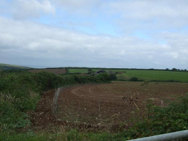 Field near Higher Goonhusband