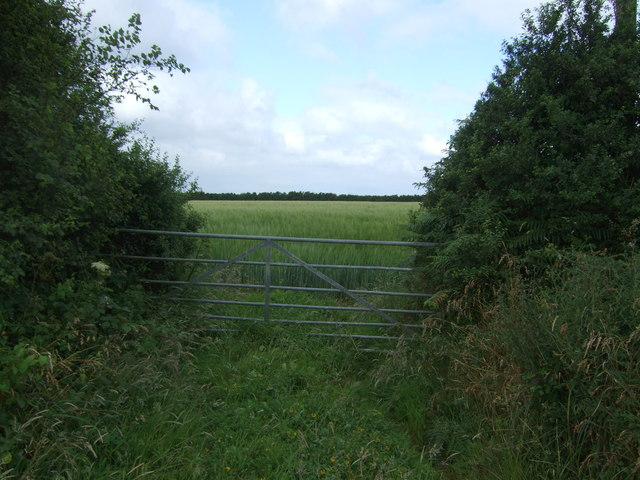 Field entrance off the A3083