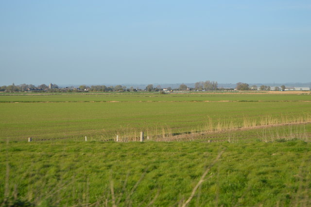 Farmland, Romney Marsh