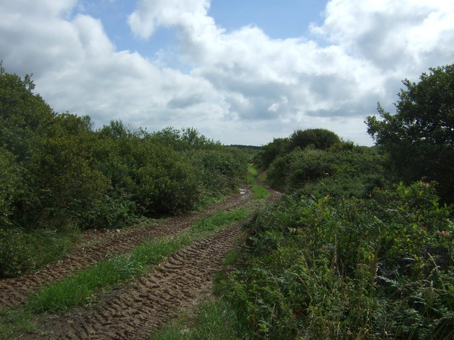 Track off the A3083