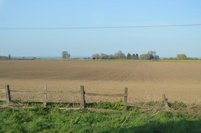 Large field