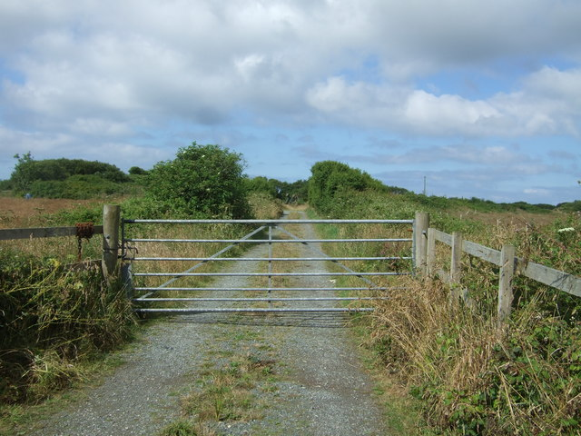 Track off the A3083 near St Helena