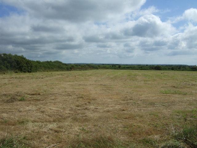 Silage field near Little Trethvas Farm
