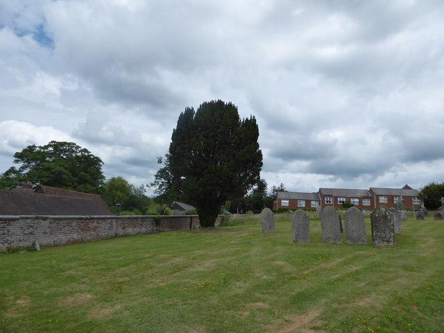 St Peter, Ashburnham: churchyard (a)