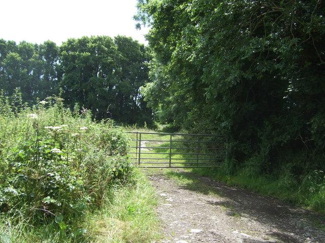 Gated farm track, Tresaddern