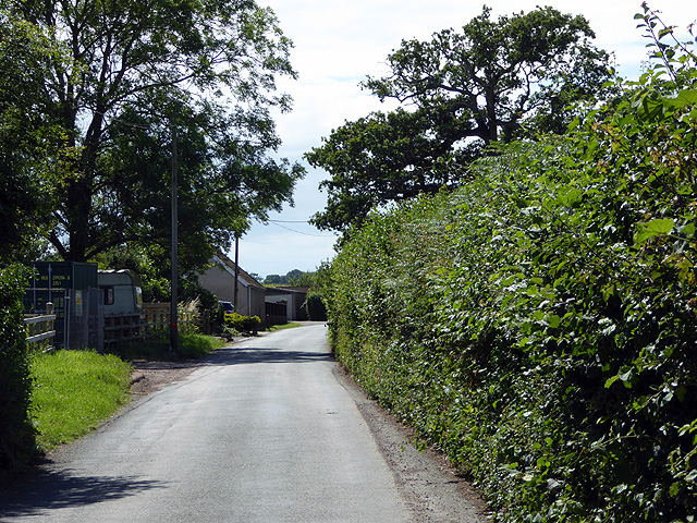 The lane from Chetnole to Stockwood