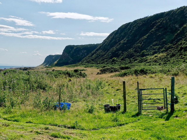Coastal track to Balintore from Rockfield