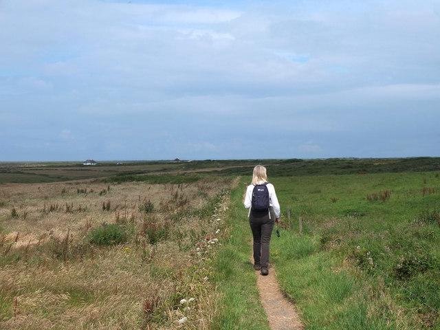 Path from Pentreath Lane to Corn Goon