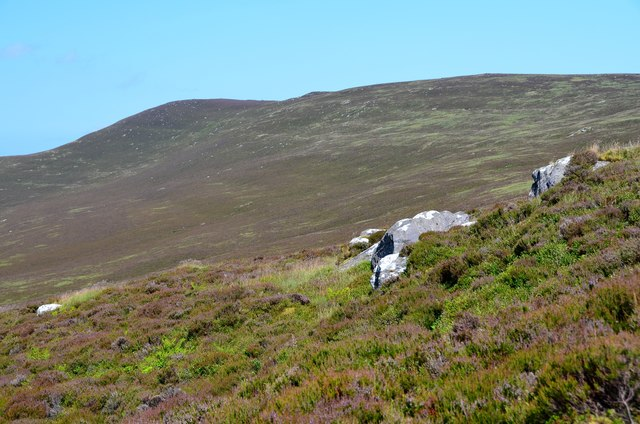 Heather moor with outcrops, Colzium Hill